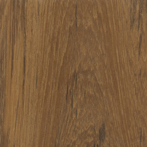 Veneer Teak 0 6mm Pre Glued 300x2500 Misc Timber